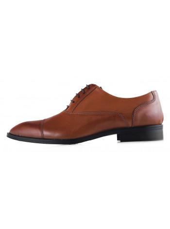 Туфли кожаные ADOLFO CARLI (ИТАЛИЯ) 20189 коричневые